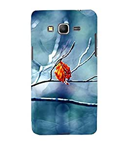 Takkloo beautiful picture of leaf blue background,brown leaf, beautiful click) Printed Designer Back Case Cover for Samsung Galaxy Core Prime :: Samsung Galaxy Core Prime G360 :: Samsung Galaxy Core Prime Value Edition G361 :: Samsung Galaxy Win 2 Duos Tv G360Bt :: Samsung Galaxy Core Prime Duos