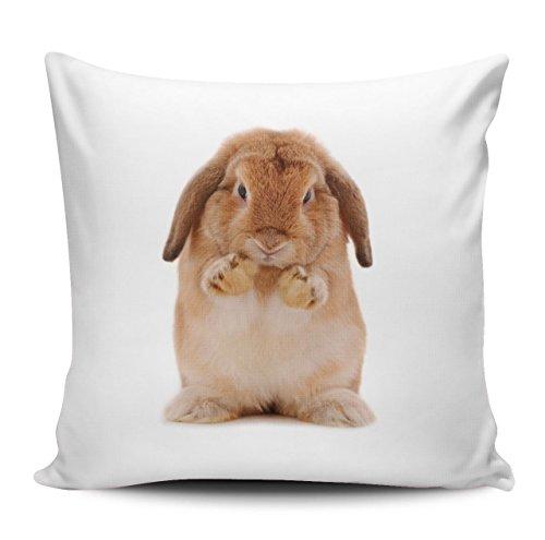 Kissenhülle / Kissenbezug aus Microfaser 40x40cm - Motiv: Kaninchen braun putzt sich| 017 (Mikrofaser-plüsch-hase)