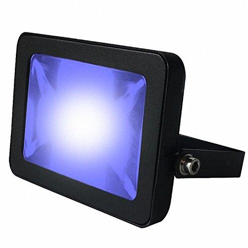 LED-Flutlicht, blau (Led-solid-state-beleuchtung)