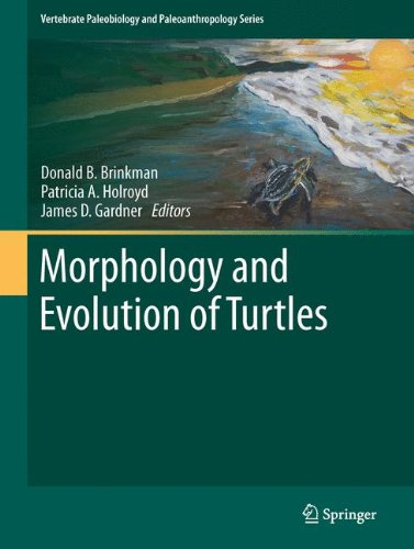 Morphology and Evolution of Turtles (Vertebrate Paleobiology and Paleoanthropology)