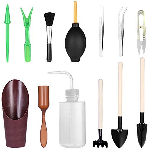 BESTOMZ 13 Stück Garten Werkzeug Set Sukkulenten Werkzeuge Miniatur Gartenarbeit Werkzeug