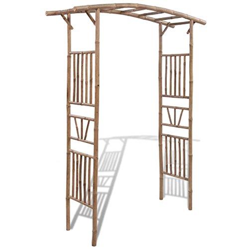 Tidyard Pergola de Jardin en Bambou pour Rosiers ou Plantes 145 x 40 x 187 cm