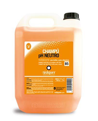 Válquer Champú pH Neutro Revitalizante - 5 l.