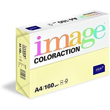 Image Coloraction - farbiges Kopierpapier Forest/grün 120g