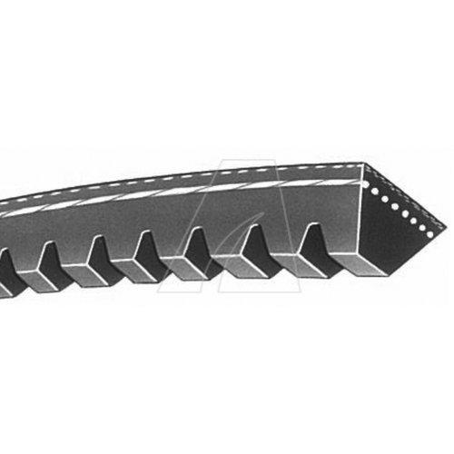 Zahnkeilriemen ZX29,5 10x788 laEinsatzzweck: MesserantriebLänge [mm]: 10 x 750Ausführung: 3Länge Li [mm]: 750Länge Ld/Lw [mm]: 772Art: ZX 29,5Länge La [mm]: 788