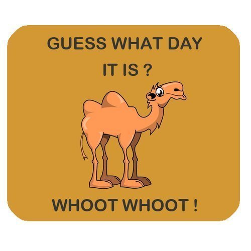 guess-what-day-it-is-camel-hump-day-personalized-rectangle-mouse-pad