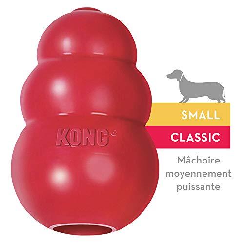 KONG - Classic en caoutchouc naturel résistant - Jouet à mordre et rapporter - Petits chiens