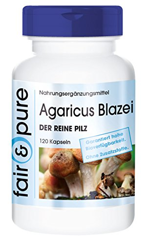 agaricus-blazei-650mg-the-pure-mushroom-abm-agaricus-blazei-murill-in-pure-form-no-additives-or-exci