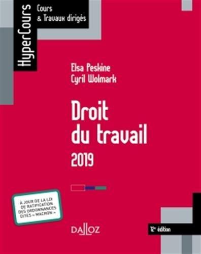 Droit du travail 2019 - 12e éd. par Elsa Peskine