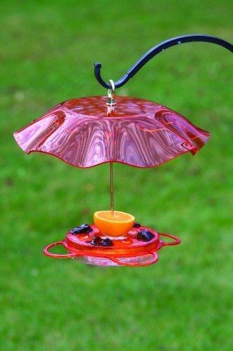 Oiseaux Choix Nectar Oriole Feeder avec Protection de météo kit par Oiseaux Choix