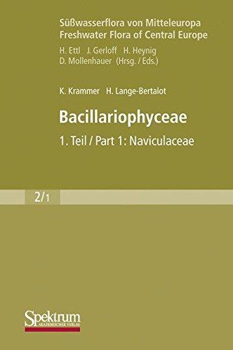 Süßwasserflora von Mitteleuropa, Bd. 02/1: Bacillariophyceae: 1. Teil: Naviculaceae, B: Tafeln