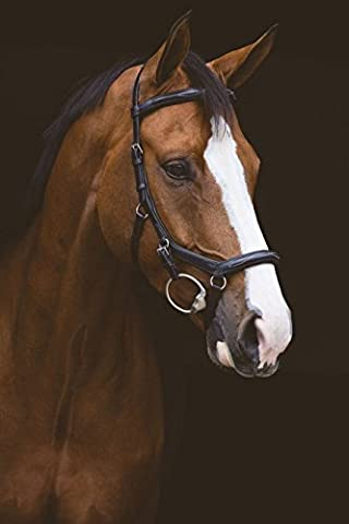 Horseware Ireland Rambo Micklem Deluxe Competition Bridle English Leather [Dark Havana] [Pony]
