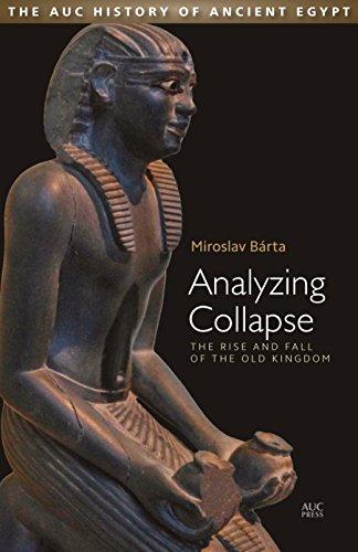Analyzing Collapse por Miroslav Barta