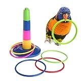 Mini Cute Bird Parrot intelligence Toy mini training skateboard per pappagallo parrocchetto Cockatiels Love Bird piccole e medie uccello Perch giocattolo divertente