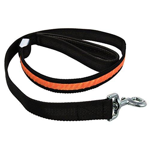 JIALUN- LED Pet Supplies RGB 1,2 MT Pet Walk bei Nacht Haustier Seil LED Leuchtende Geeignet für mittlere und kleine Hunde (1 Stück) ( Color : Orange ) - Orange-seil-licht