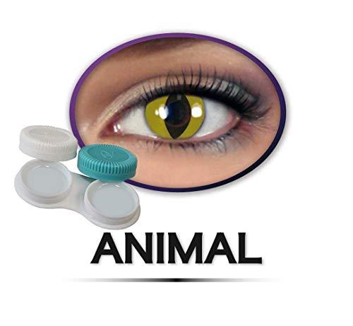 Kontaktlinsen farbig ohne Stärke, Katzenaugen, Tiger, Leopard, Schlange, Tieraugen