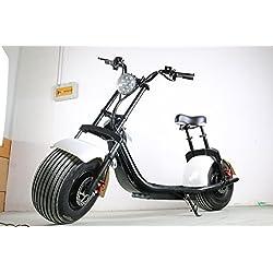 Scooter Eléctrico ML-SC10 Citycoco