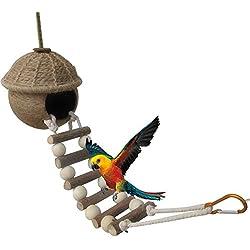 Nido de Pájaro Coco Balancín Ladder Dormir Espacio para hámster loros Ninfa loros agapornis
