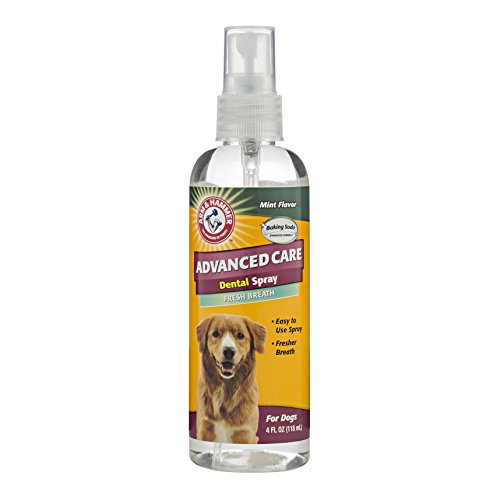 arm-hammer-advanced-care-tartar-control-dental-spray-spearmint-flavoured-118ml