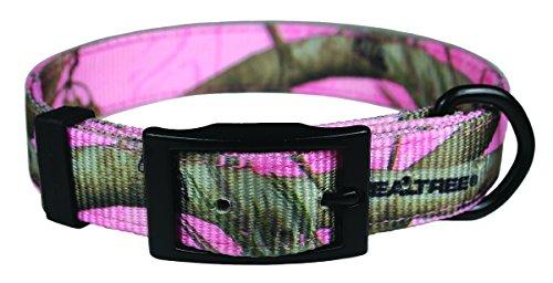 OmniPet Offizielles Lizenzprodukt Realtree APC Camouflage Nylon Halsband mit Schwarz langlebigem Metall Hardware -