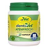 Zahnpflege Atemerfrischer