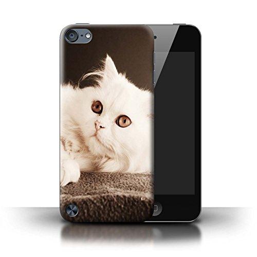 Stuff4® Hülle/Case für Apple iPod Touch 5 / Perser Lange Haare Katze Muster Katze/Katzenrassen Kollektion