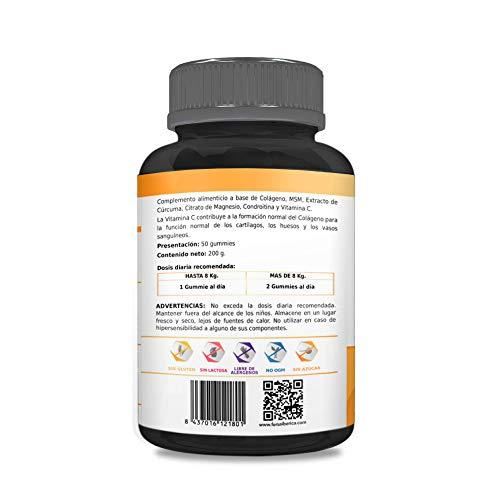 41vEtXi94UL - Antiinflamatorio Natural para Perros y Gatos | Colágeno + Cúrcuma + Condroitina + Magnesio + MSM + Vitamina C | Combate el dolor y la inflamación | Recupera su energía y movilidad | 50und. sin azúcar