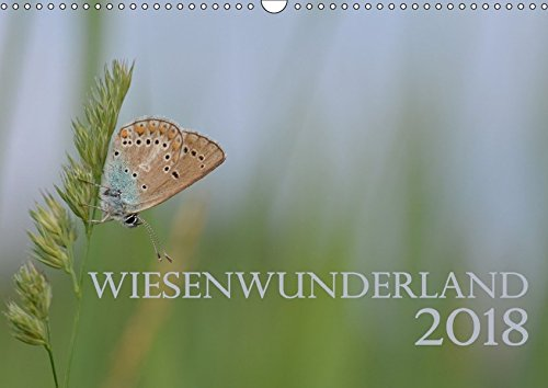 Wiesenwunderland 2018 (Wandkalender 2018 DIN A3 quer): Einheimische Wiesenblumen oder Insekten werden Dank Makroobjektiv zu Kunstwerken im ... ... [Kalender] [Apr 25, 2017] Wandel, Juliane (Einheimischen Gräser)