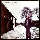 DAVID GILMOUR / DAVID GILMOUR