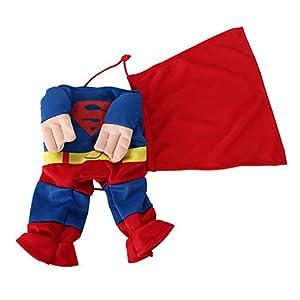 """DIGIFLEX Déguisement Costume de Super-Héros pour Animal Domestique Chien/Chat Halloween Petit Col 9.8""""/25 cm"""