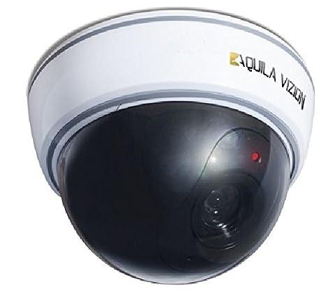 Aquila Vizion Dummy Vizion Outdoor Dome Caméra IP