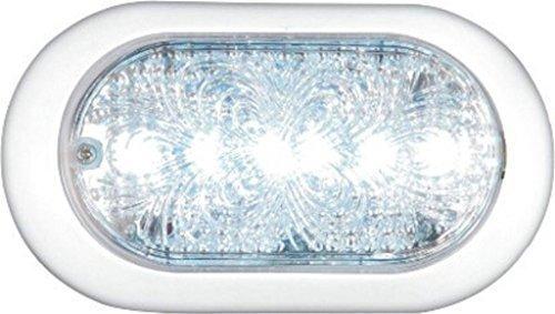 Lite Vert : Bus Entraîneurs ovale 24 V LED Intérieur veille lamp-12001602