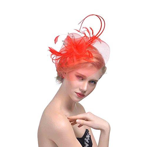 dressfan Elegantes rundes Maschen-Netz-lange Feder Fascinator-Haar-Klipp-Hut-Bankett -