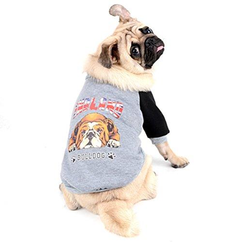 Zunea Französische Bulldogge Kleidung Hund Winter Hundepullover Mantel Bulldog Muster Weich Warm Hund Bekleidung Sweatshirts Haustier Kleidung für Bulldoggen Pitbulls Grau S -