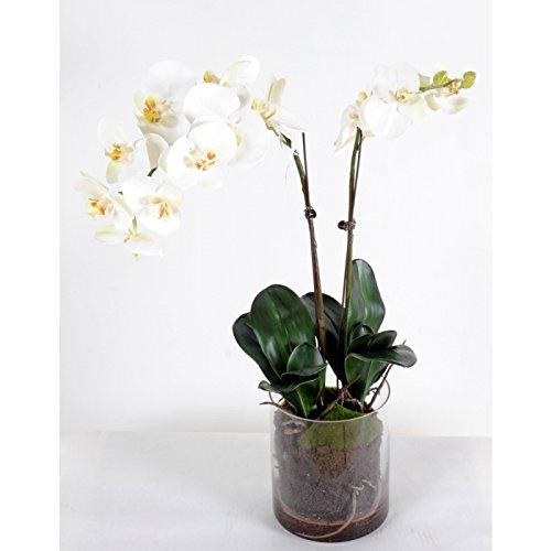 bouquet artificiel phalaenopsis vase rond - h : 70