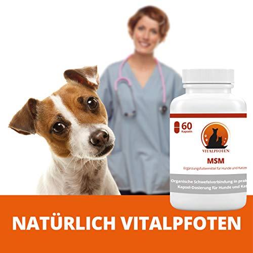Vitalpfoten MSM Kapseln für Hunde und Katzen 60 Stück Ergänzungsfuttermittel pures MSM – Sanfte Dosierung, höchste Reinheit und Qualität, Herstellung in Deutschland
