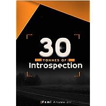 30 TONNES OF INTROSPECTION (English Edition)