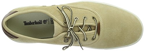Timberland Amherst Suede Ox, Baskets Basses Homme Beige - Beige (Travertine)