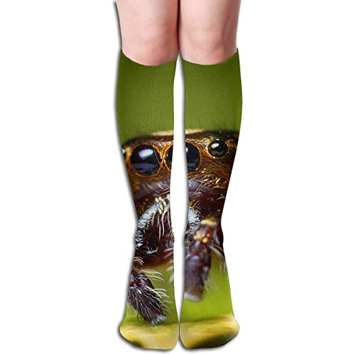 Compression Socks Spider Leaves High Boots Stockings Long Hose For Yoga Walking For Women Man (Spider-girl-hose)