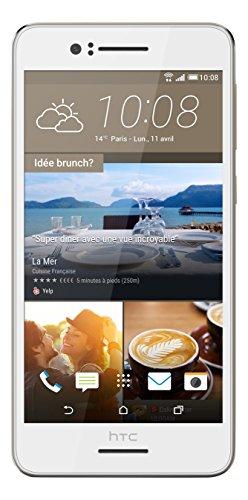 HTC Desire 728Smartphone entsperrt 4G (Display: 13,5 cm / 5,5Zoll–16GB–einfache Nano-SIM–Android) (Smartphone Htc Entsperrt)