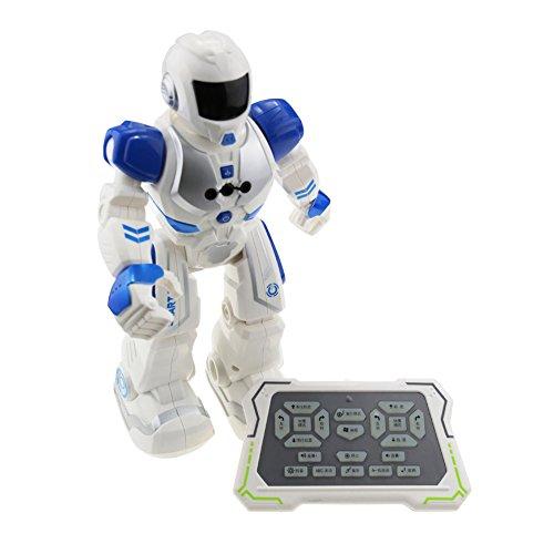 WMAOT-Robot-Inteligente-Programa-de-Canto-Carga-por-USB-Control-Remoto-por-infrarrojos