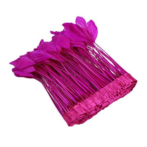 MagiDeal 2 Meter Gefärbte Feder Trim Fringe Ribbon Für Hochzeit Dekoration Kleid/Kleidung Zubehör Federband Diy - Rose rot, 2 Meter