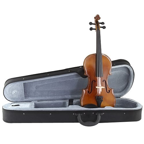 Stagg 25013231 VN-3/4 3/4 Standard Violin Soft