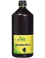 cdVet Naturprodukte - 453 / DarmAktiv - Concentré spécial digestion - Chevaux - 1000 ml