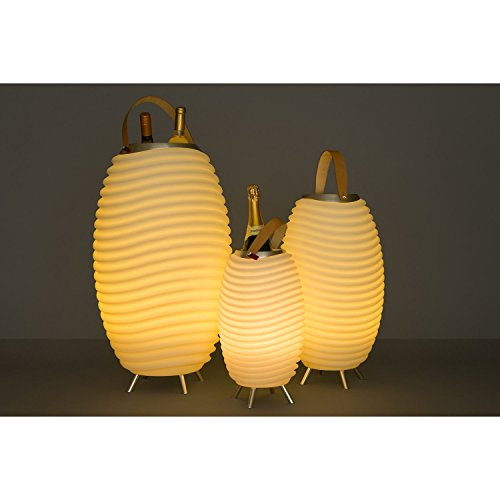 TronicXL Design Flaschenkühler mit Bluetooth Lautsprecher bleuchtet LED für Sekt Wein etc (Mittel)