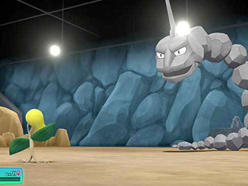 Pewter City Gym Battle With Brock