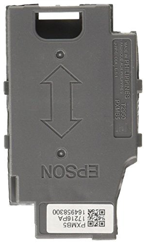 Epson C13T295000 Scatola di Manutenzione