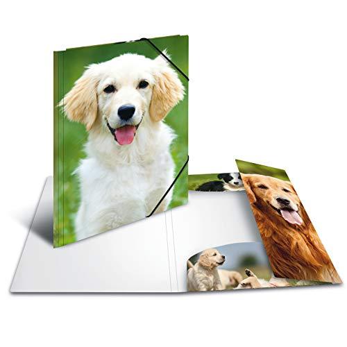 pe DIN A4 Tiere Hunde aus stabilem Kunststoff mit bedruckten Innenklappen, Gummizugmappe, Eckspanner-Mappe, 1 Zeichenmappe für Kinder ()