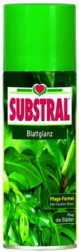 substral-hojas-brillo-200ml