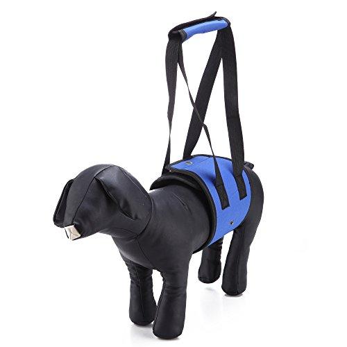 Rollstuhl-unterstützung (LXLP Dog Lift Geschirr Unterstützung Sling Hilft Hunde mit Schwache Vorne Oder Hinten Beine, Walk, Get in Autos, Treppen. Beste Alternative zu Hund Rollstuhl, Mdeium, Blau)